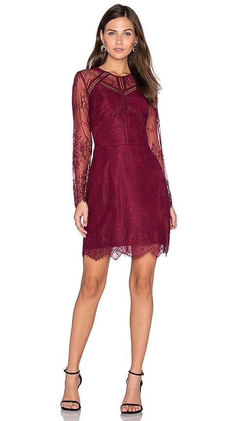 Greylin Shirley Lace Dress in Burgundy