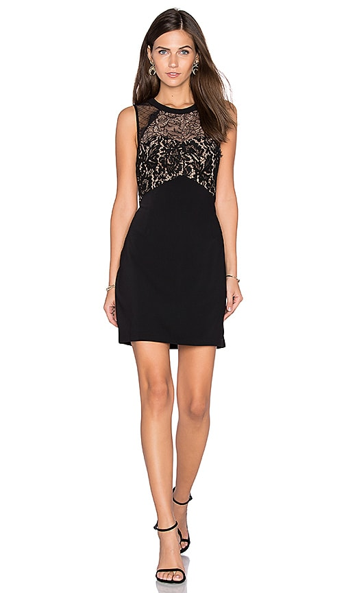 Greylin Cynthia Lace Dress in Black