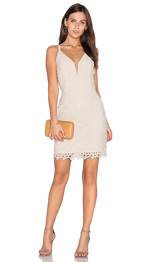 Greylin Olivia Lace Dress in Ivory