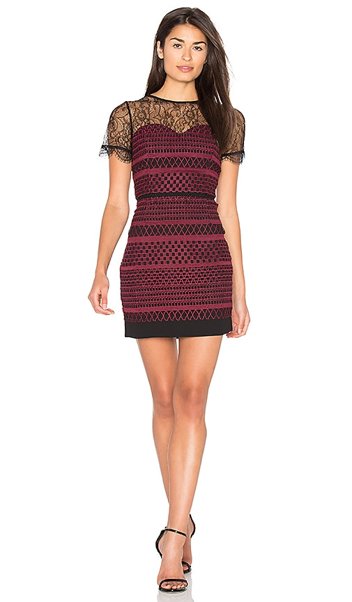 Greylin Heidi Lace Dress in Wine