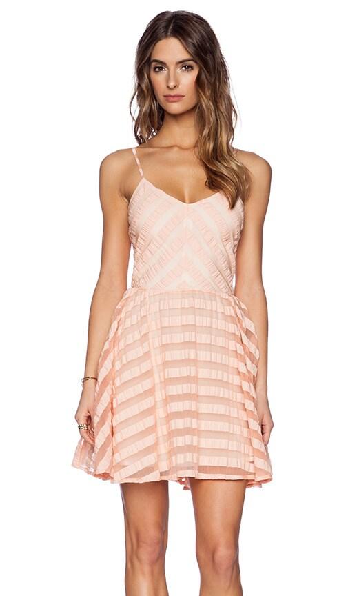 Finley Skater Dress