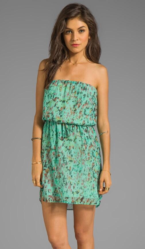Medewi Leopard Silk Tube Mini Dress