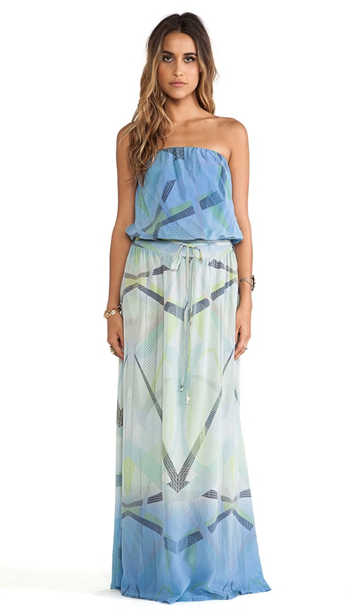 Printed Silk Tube Maxi Dress