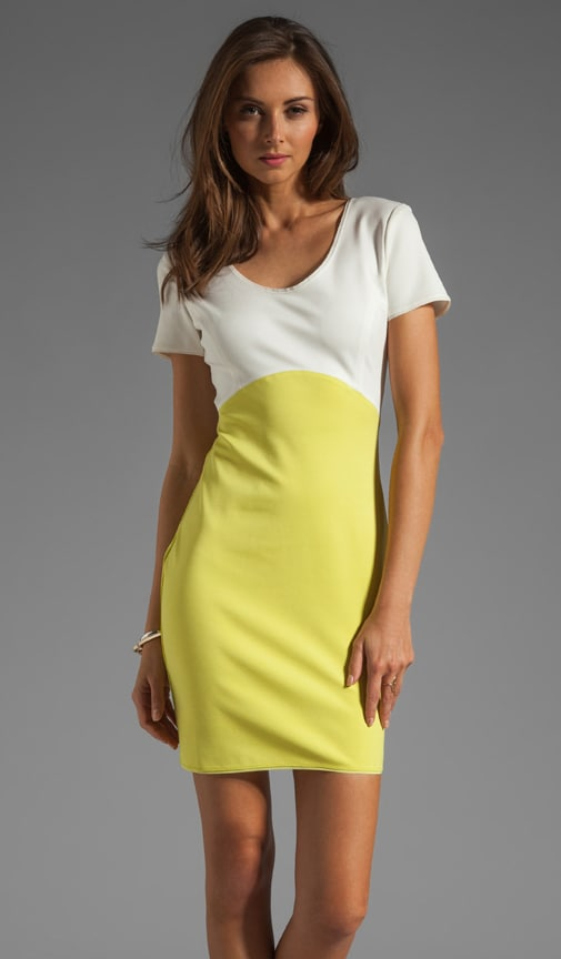 Short Sleeve Colorblock Ponte Dress
