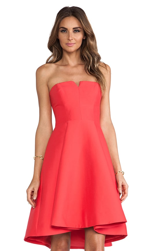 Structured Flare Dress