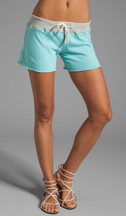 Burn Out Vintage Shorts