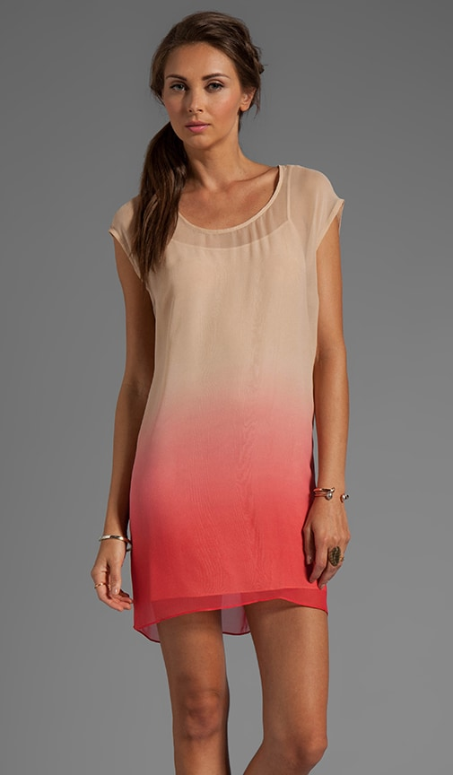Ombre Chiffon Dress with Slip