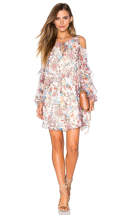 Haute Hippie The Flower In The Sun Dress in Paisley Floral