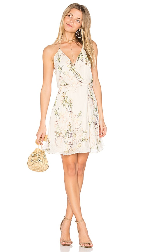 Haute Hippie The Harmony Dress in White