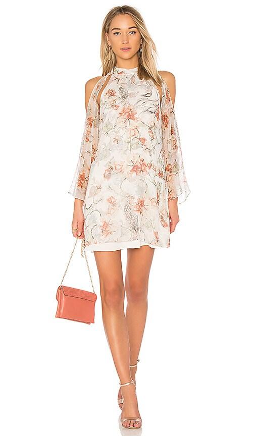Haute Hippie Paradise Dress in Ivory