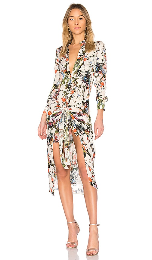 Haute Hippie Debutante Dress in Buff Floral | REVOLVE