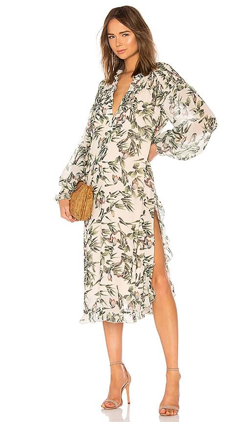 Street Sweeper Dress in Flower