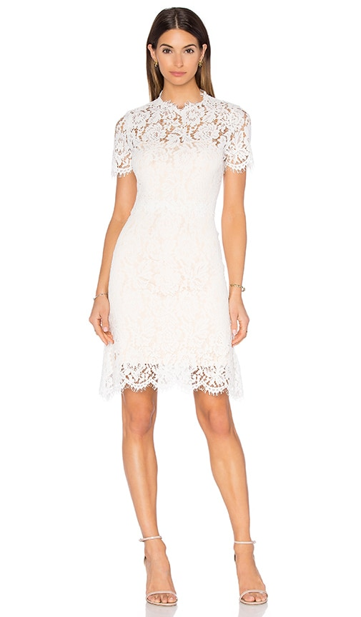 Allegra Lace Dress