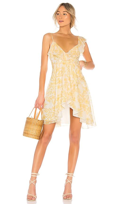x REVOLVE Darma Dress