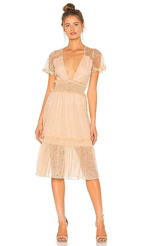 x REVOLVE Dimas Dress