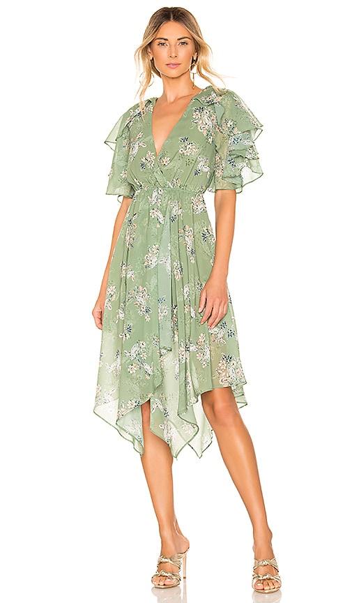 x REVOLVE Cecilio Dress