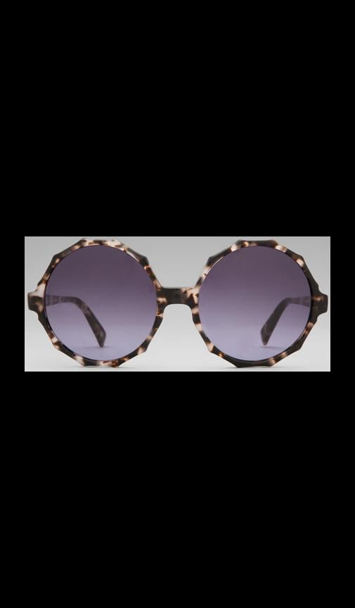 House of Harlow Penny Sunglasses