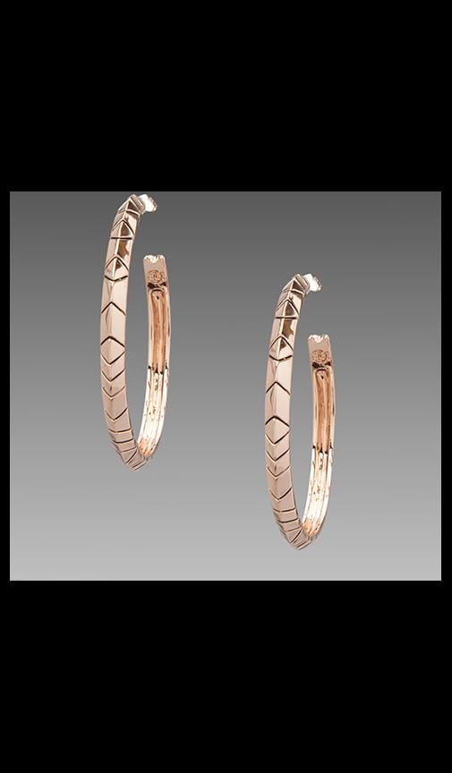 House of Harlow Tribal Hoop Earrings