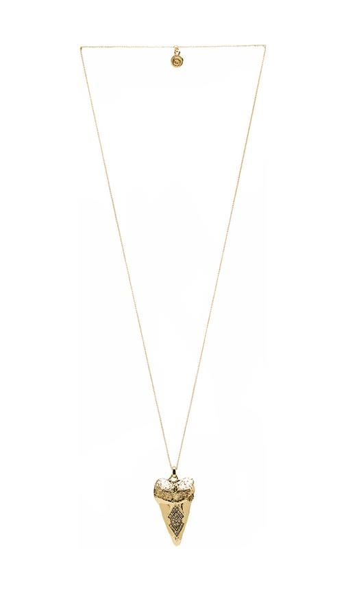 House of Harlow Tribal Tooth Pendant Necklace