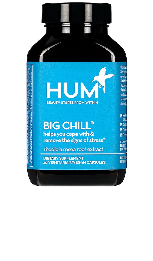 BIG CHILL SUPPLEMENT