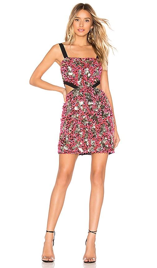 Molly Mini Dress