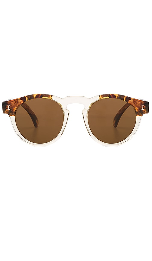 illesteva Leonard Sunglasses in Brown