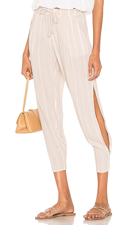 Alligator Side Slit Pant