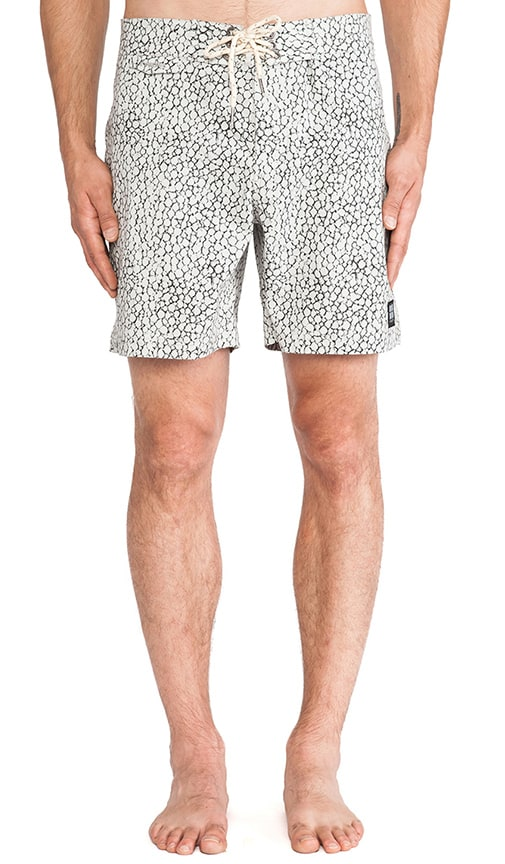 Stingray Boardshort