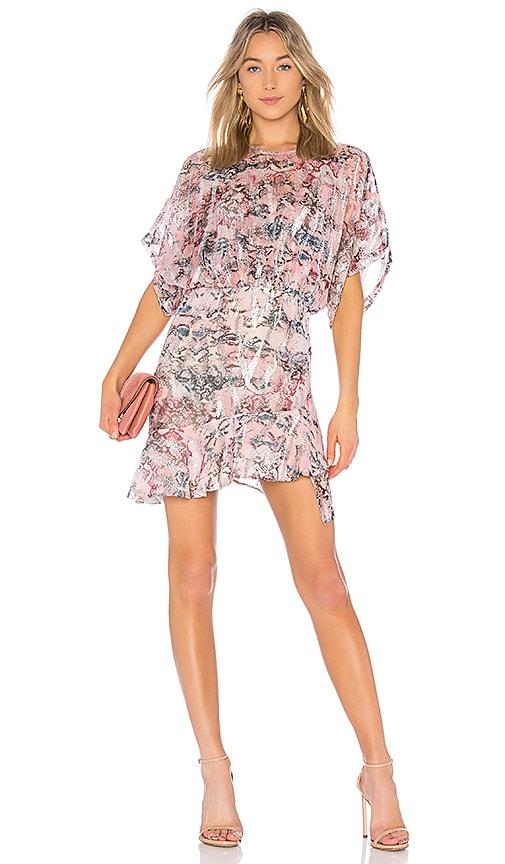 IRO Wobam Dress in Pink
