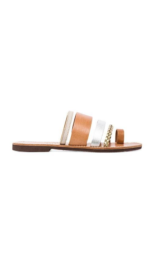 Gerbera Sandal