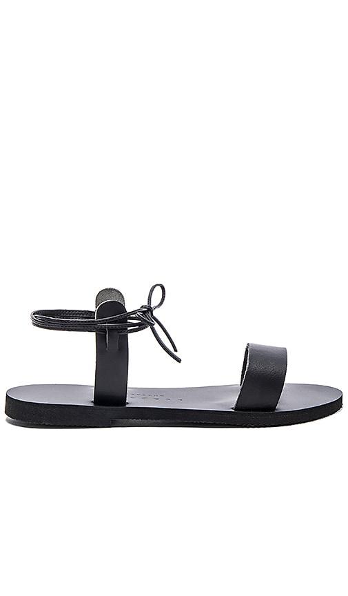Thyme Sandal