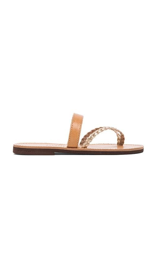 Arocaria Sandal