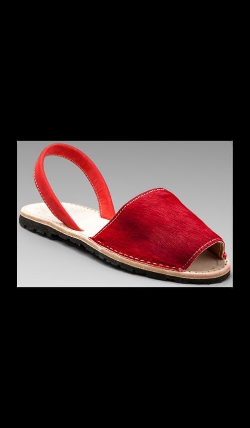 Pony Albarcas Sandal