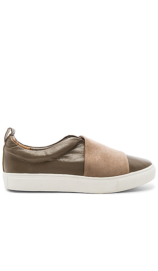 JAGGAR Onward Sneaker in Taupe