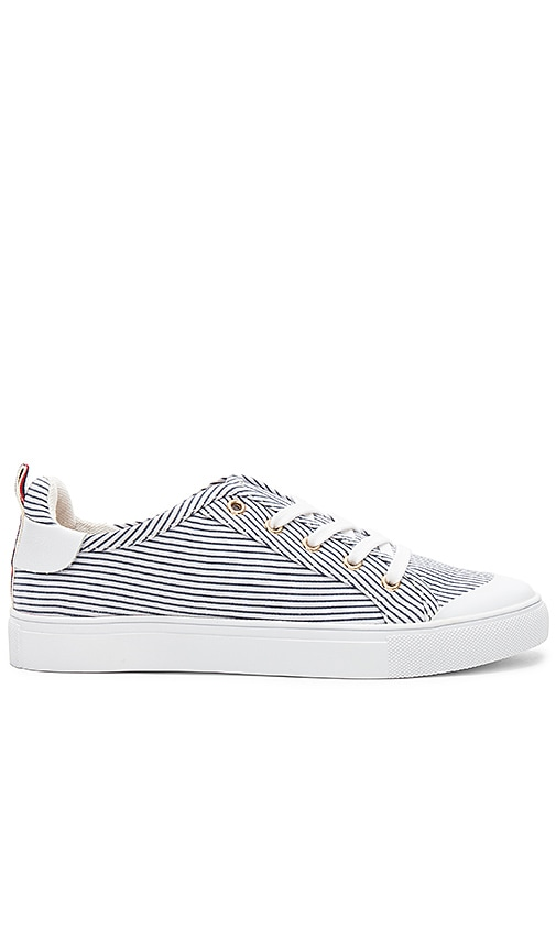 JAGGAR Lace Me Up Stripe Sneaker in White