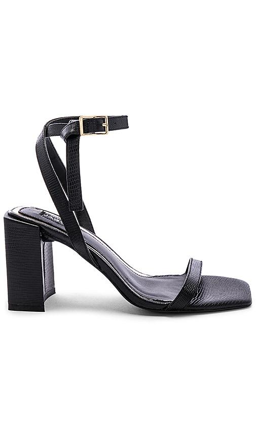Essential Lizard Heel