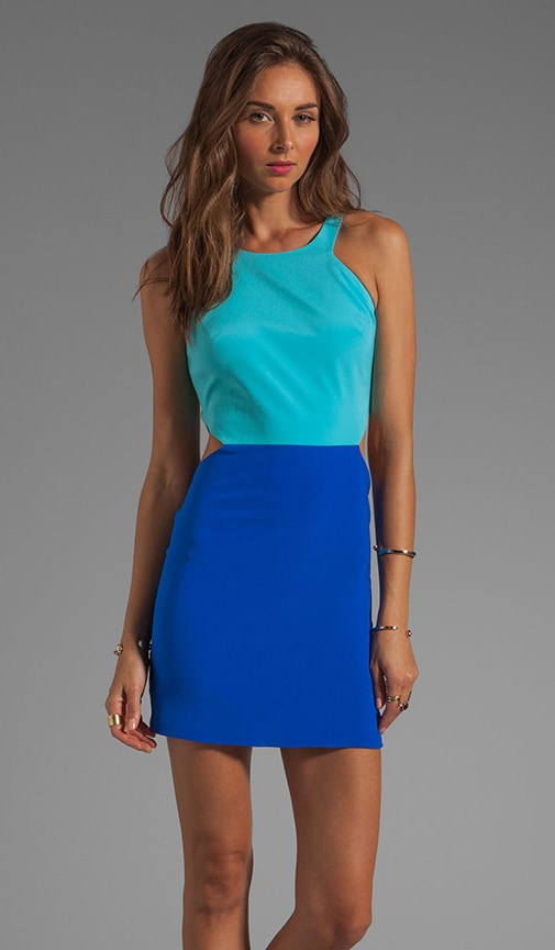 Colby 2 Tone Dress