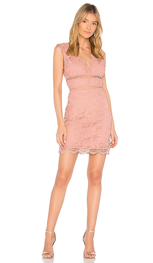 J.O.A. Open Back Lace Dress in Rose