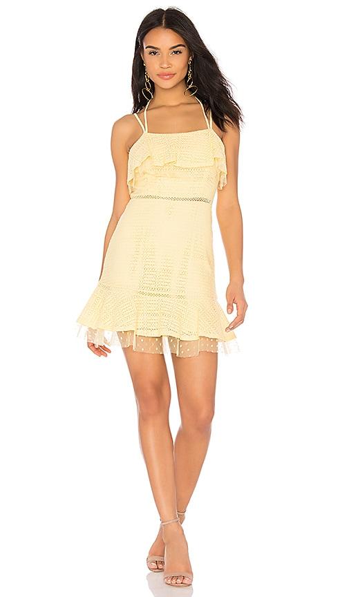 Hot J.O.A. Lace Detail Ruffle Hem Dress in Yellow