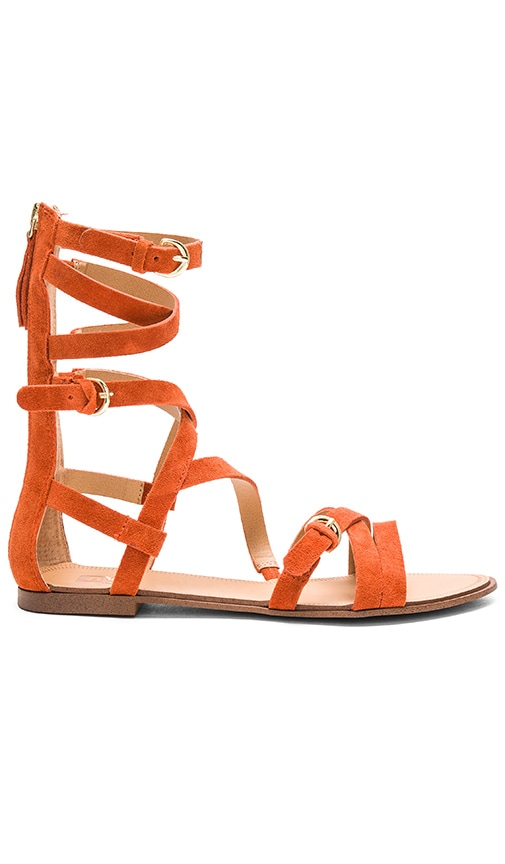 Joe's Jeans Teddy Sandal in Orange