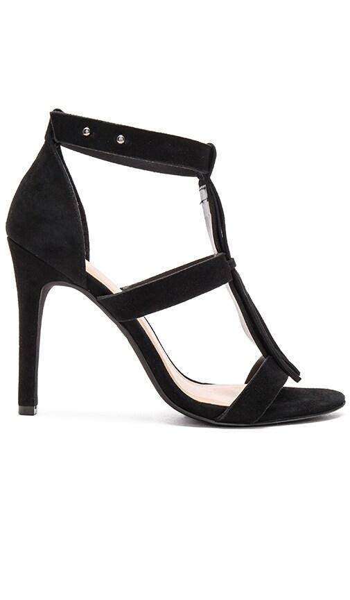 Castor Heel