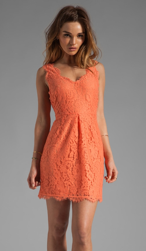 Rori Lace Dress