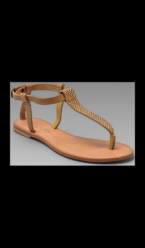 a La Plage Shoal T Strap Sandal
