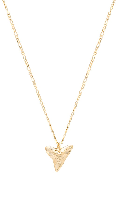 joolz by Martha Calvo Shark Tooth Necklace in Metallic Gold