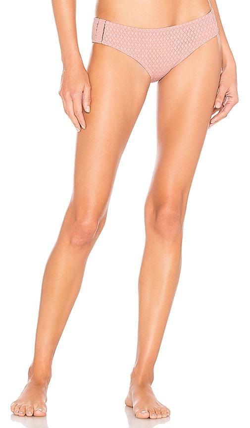 Lace Insert Bikini Bottom