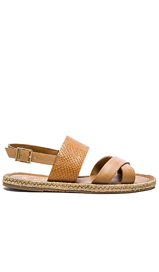 Kaanas Cayman Sandal in Tan