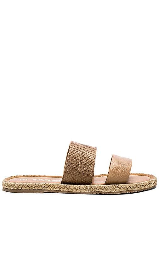 Kaanas Haiti Two Strap Sandal in Coffee