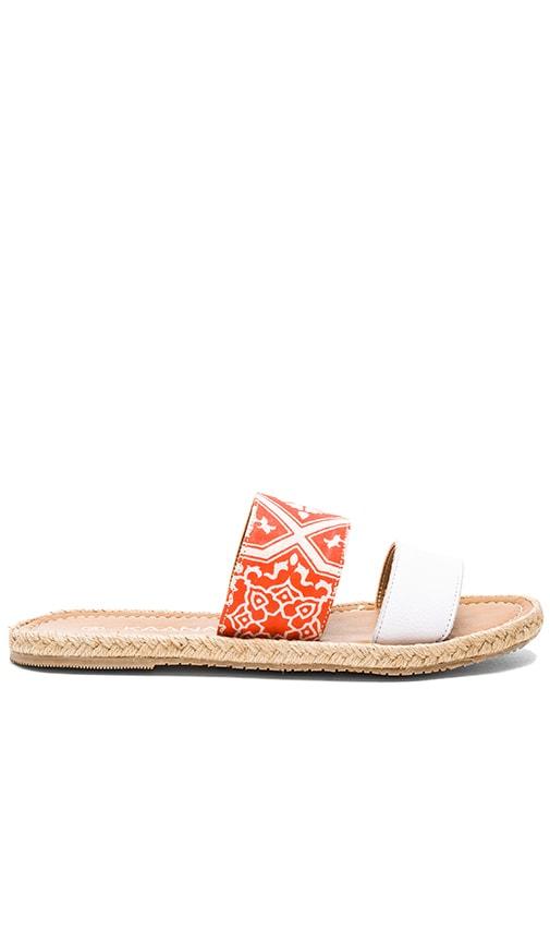 Belize Sandal