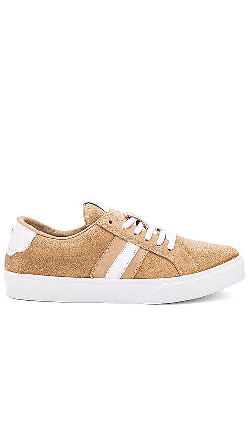 Kaanas Tatacoa Sneaker in Tan