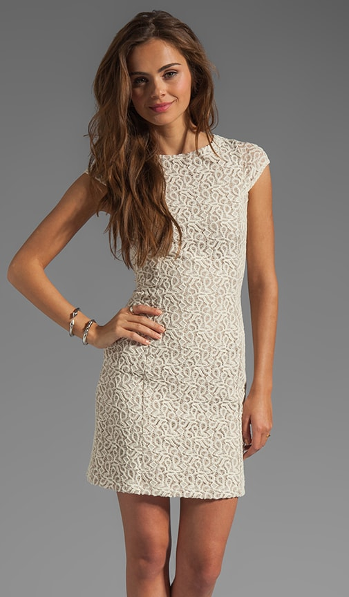 Lace Goldie Dress